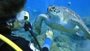 Diving-Tenerife